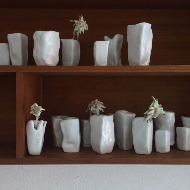 edelweiss shelf